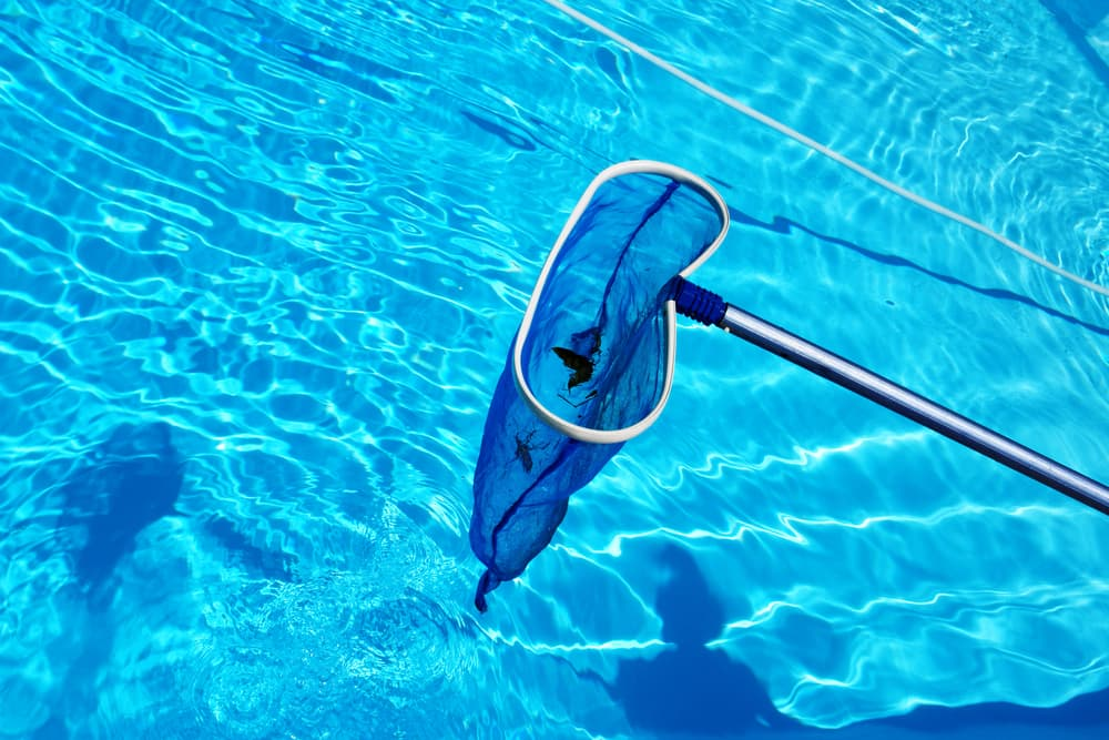 6 Items That Every Pool Owner Needs