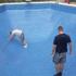 lining pool